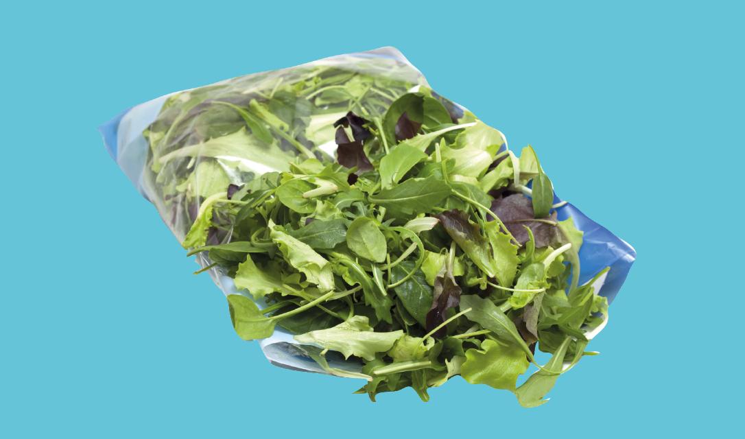verdura-1
