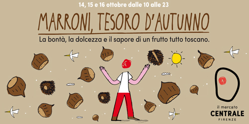 Marroni, tesori d'autunno.