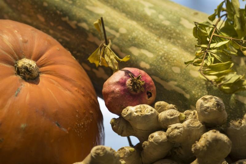 Nutraceutica, il cibo come medicina nella Grecia di Ippocrate